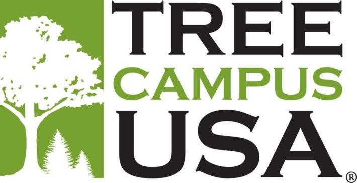 Tree Campus USA logo