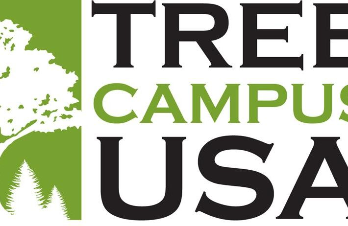 logo for Tree Campus USA