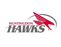 Hawks logo with words