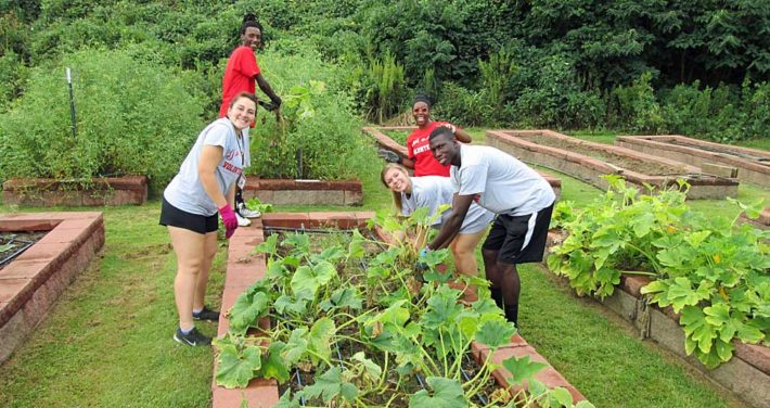 Students serving at Big Red Day of Service